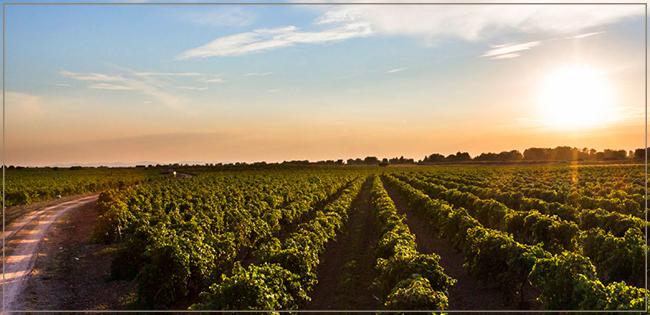 Região de Castilla La Mancha