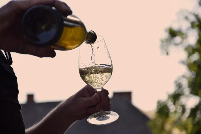 Chardonnay não envelhecido