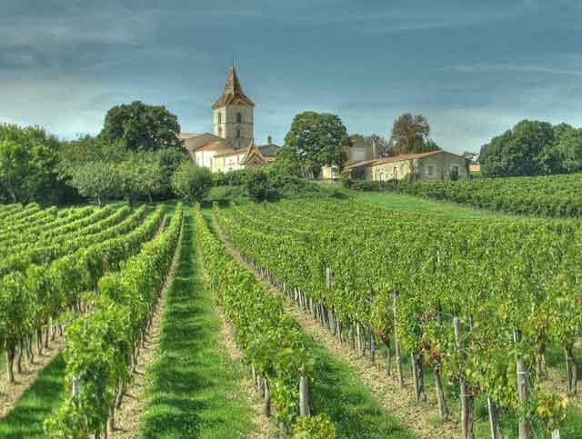 Safra de Bordeaux